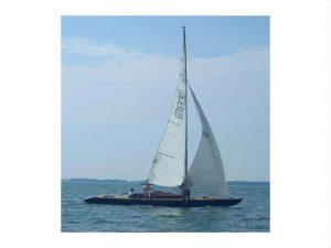 fusta barco
