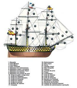 gavia barco