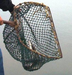 salabre de pesca