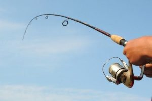 spining pesca